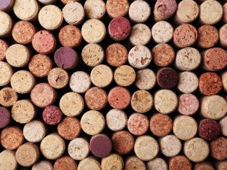 Portefólio de vinhos